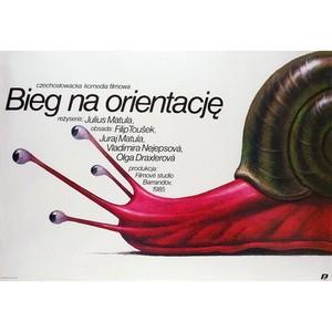 Bieg Na Orientacje, Polish...
