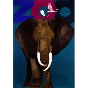 ZOO - Elephant and...