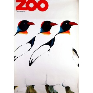 ZOO - Penguins, Polish Poster