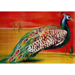 Peacock, Polish Poster