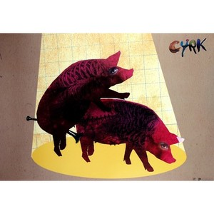 Two Pigs Polish Art Poster...