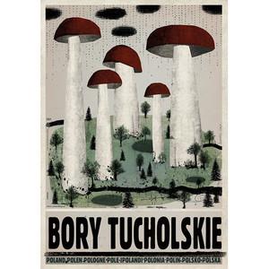 Bory Tucholskie, plakat z...