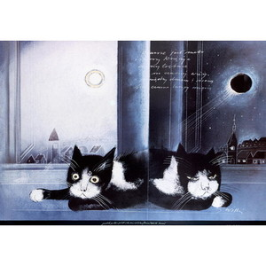 Two Cats, Polish Poster