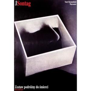 Death Kit, Susan Sontag,...
